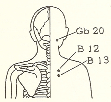 back of a person's head showing meridian point GB 20